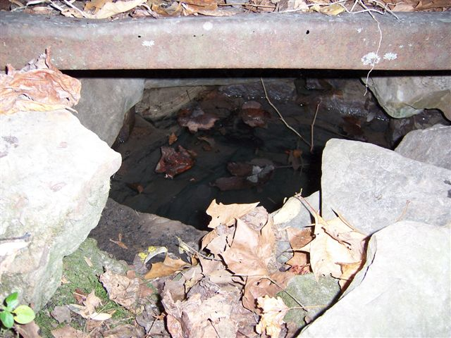 Hobo spring as it is today